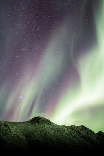 The Aurora on Macquarie Island  - by Nick Fitzgerald - 15