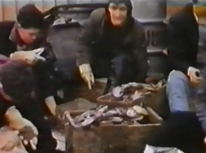 Living with and caring for the D Entrecasteaux Channel - ScreenCap - by Sheltered Passage - 017