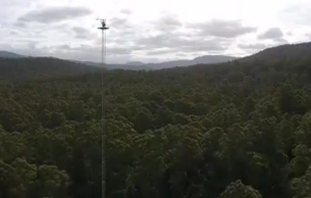 Warra Flux Tower from TerraLuma UAV - by Arko Lucieer 5.28.20 pm