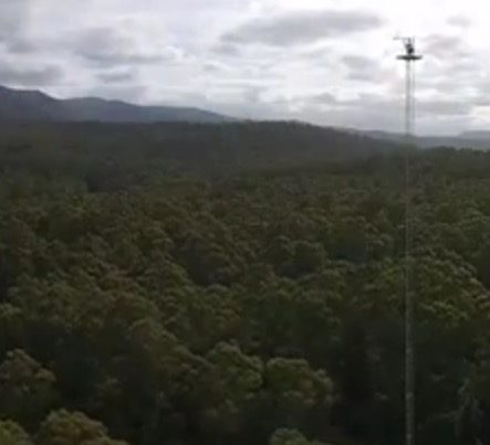 Warra Flux Tower from TerraLuma UAV - by Arko Lucieer 5.28.24 pm