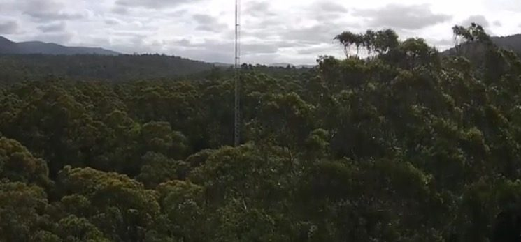 Warra Flux Tower from TerraLuma UAV - by Arko Lucieer 5.28.45 pm