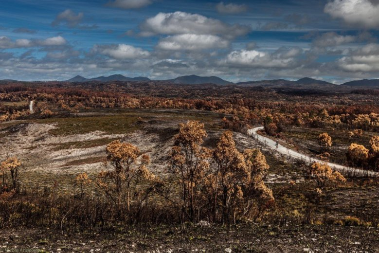 View to the Norfolk Range, with unnatural autumnal colours - 14 Mar 2016- by Nicole Anderson