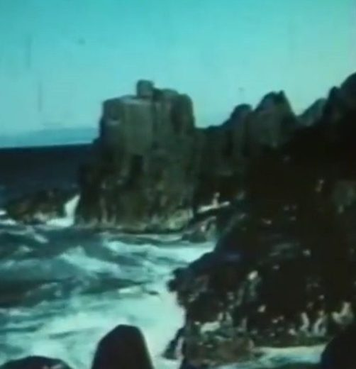 Gateway to Charm (1955 Northwest Tasmanian Tourism) -46