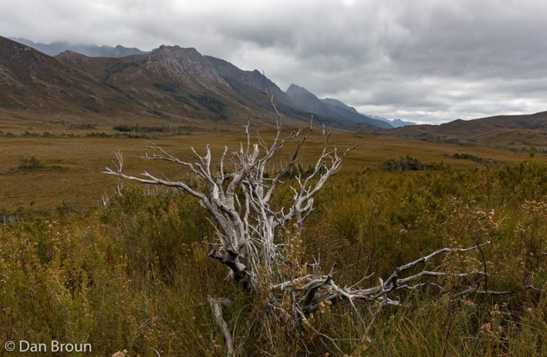 After crossing The Razorback we are greeted with views of the Western Arthurs- by Dan Broun