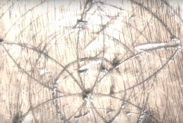 The Tasmanian Magic Project - video screencap 10