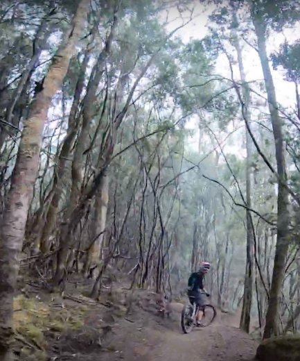 Mountain Biking Through the Goblin Forest -by Tracks Less Travelled - 15.54.33