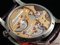 Romain Gauthier Insight Micro-Rotor back