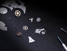 Fabergé Visionnaire DTZ Gallivanter - components