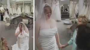 bride-wedding-dress-bullies
