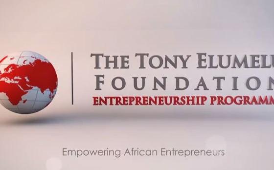12071ce2 tony elumelu foundation tef entrepreneurship programme
