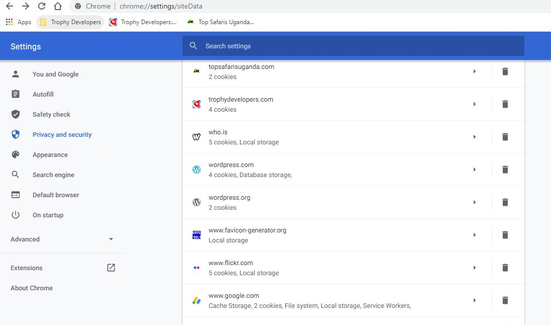 cookies in google chrome browser desktop view