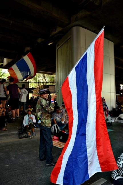 Un manifestant anti-gouvernement porte fièrement le drapeau national - Photo : Wilfried Devillers