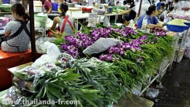 flowermarket20141116_014