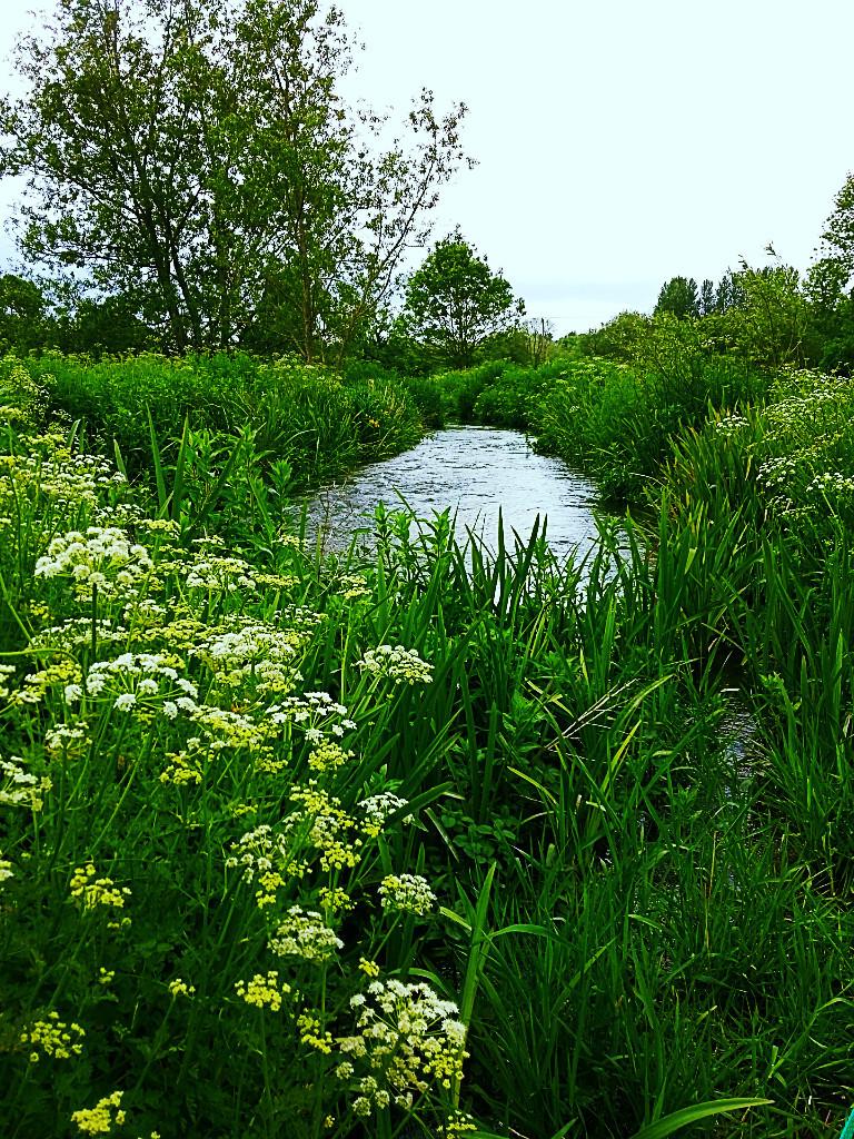 river-side