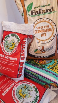 Make sure you are starting your seeds in a super fine germinating mix.