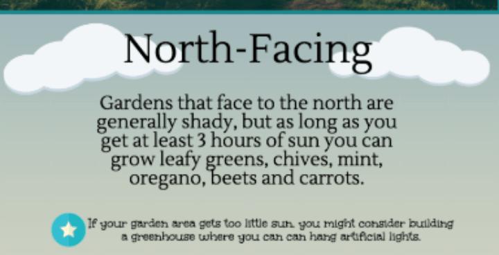 North-Facing