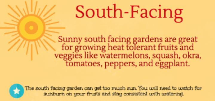 South-Facing