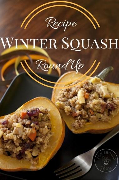 Winter Squash Recipe Round Up