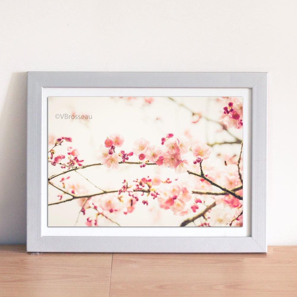Photo Fleurs Sakura Cerisier Decorative Branches Fleuries De Cerisier Japonais Un Grand Marche