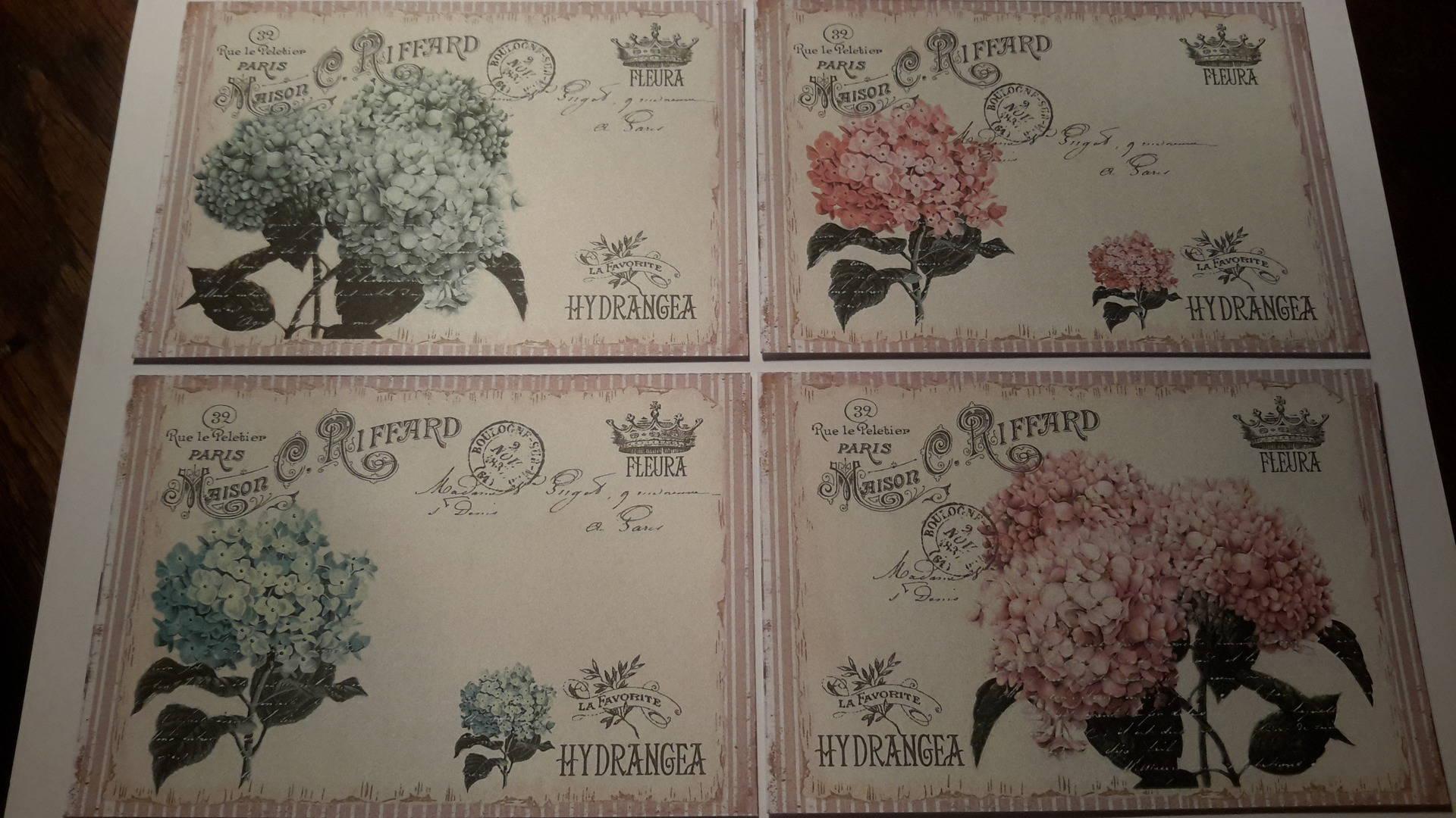 Lot De 4 Cartes Images Fleurs Hortensias Hydrangeas Bleu Et