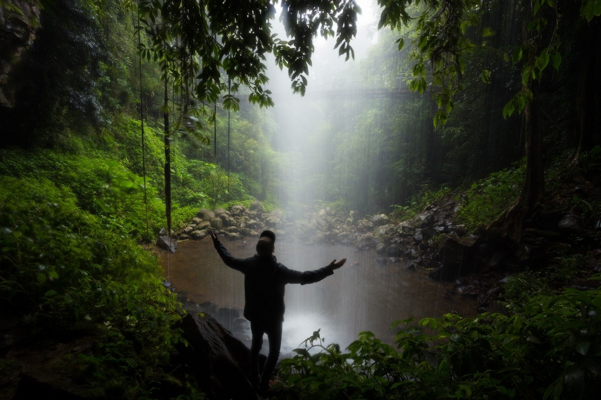 A Wet Monday Morning In Dorrigo National Park (NSW), Liam Hardy, waterfall, rainforest, pool, behind a waterfall, rainy