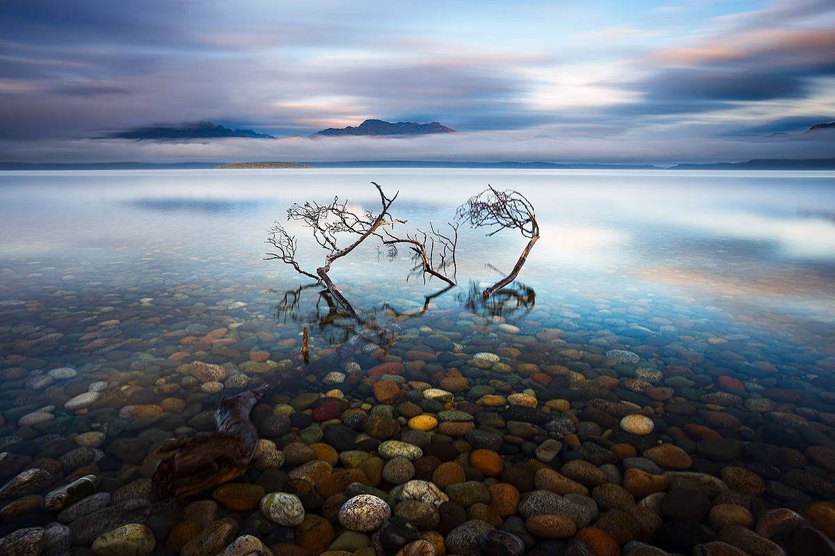By Land And By Sea // Te Anau to Milford Sound (NZ) Liam Hardy, Lake Te Anau, branch, pebbles, sky, cloud, clear water