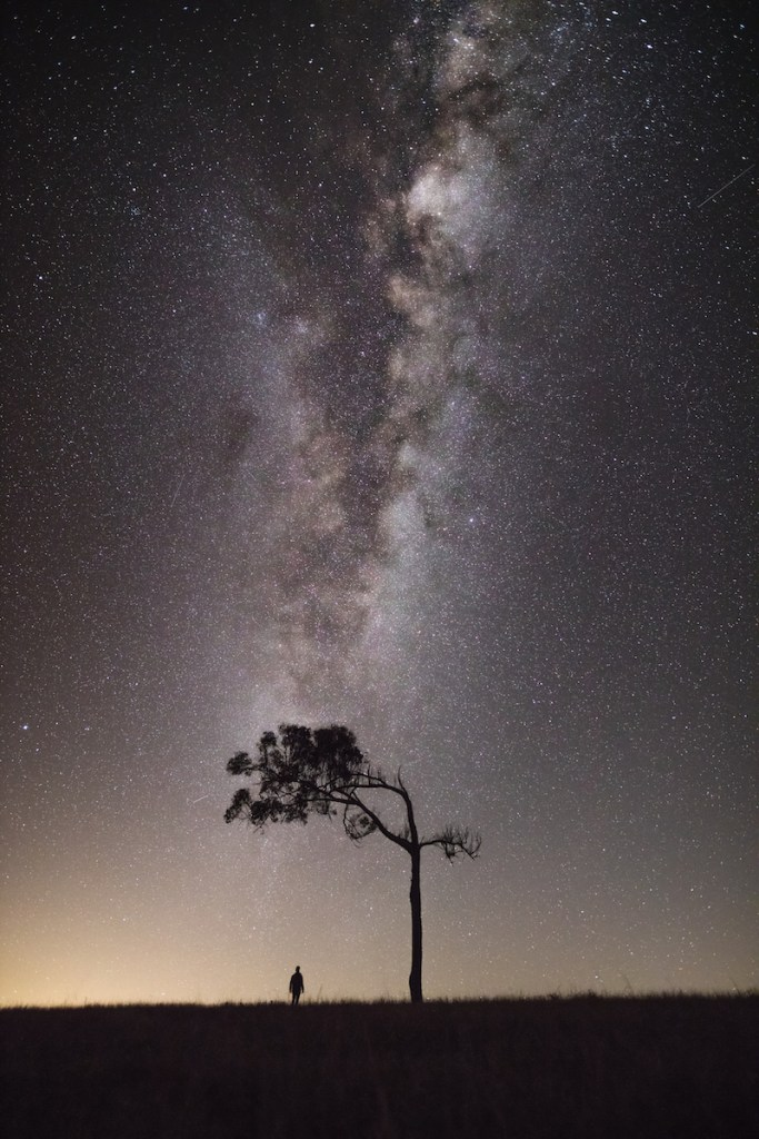 gareth mcguigan adventure photography tree astro