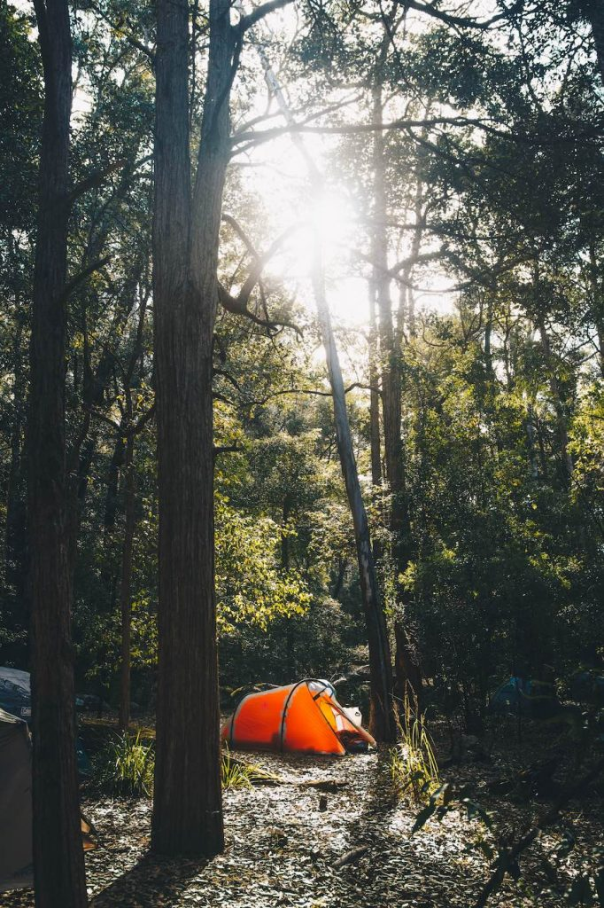 When Everything Flows // Kangaroo Valley Canoeing Escape, Aron Hailey, tent, sunlight, trees, romantic, secluded, solitary