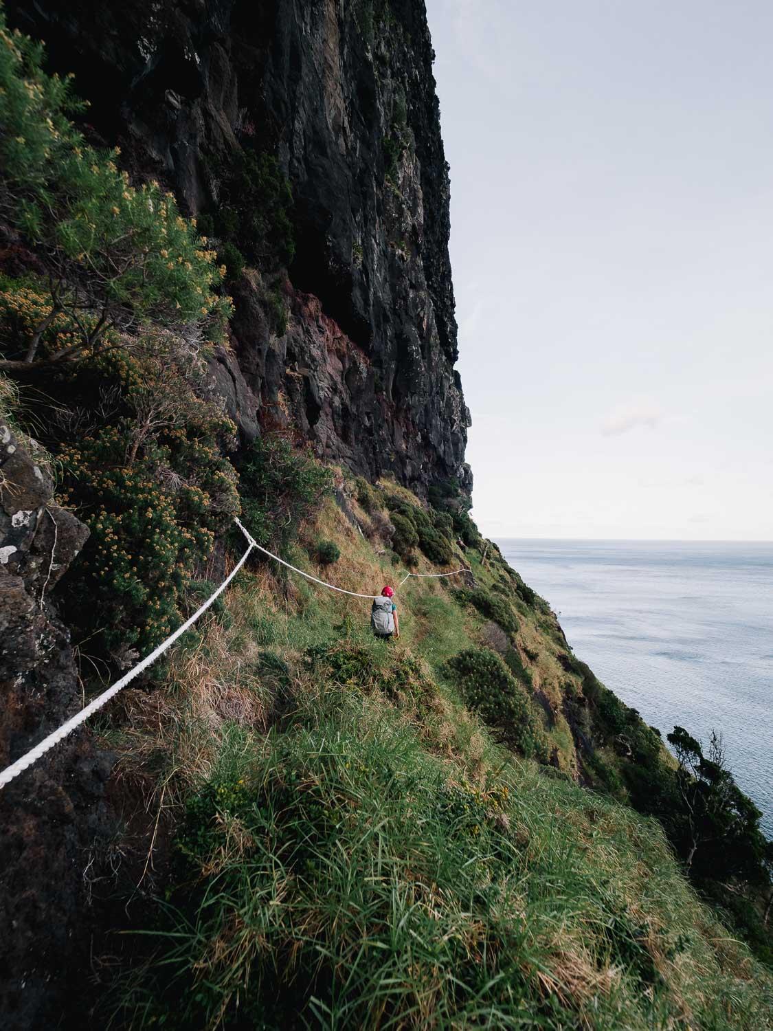 Lord Howe Island's Photography Hot Spots, Matt Horspool, rope, cliff edge, sketchy, steep, long drop, ocean,