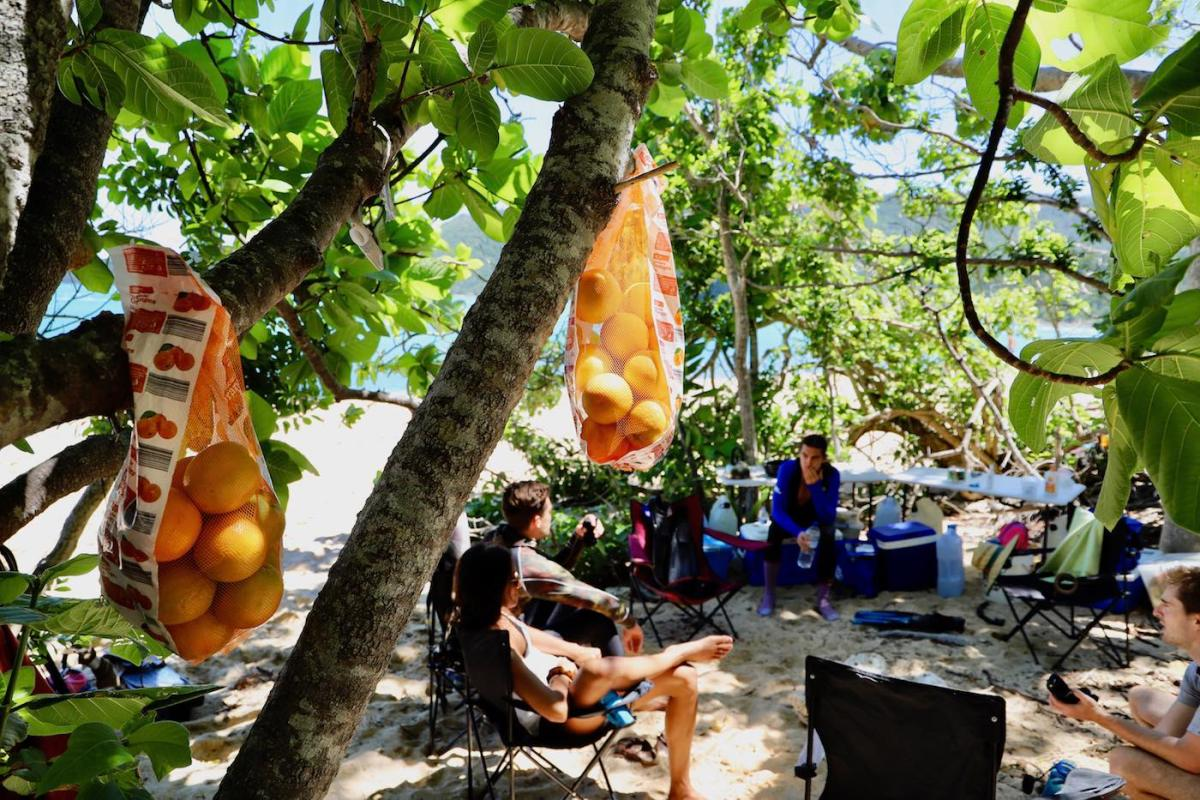 Camping The Whitsundays // Cairn Beach Campground (QLD), Solaye Snider, camp, oranges, trees, sitting around, lounging