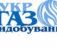"""Исполнительная служба арестовала счета """"Укргаздобычи"""" из-за долгов """"Карпатыгаза"""""""