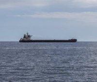 РФ задержала более 150 кораблей на пути в украинские порты на Азовском море, – Госпогранслужба