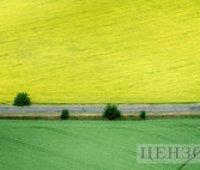 Агрохолдинги сконцентрировали почти треть всех сельхозземель в Украине