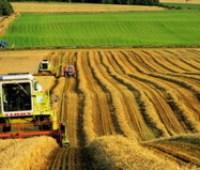 Рада одобрила законопроект о противодействии аграрному рейдерству