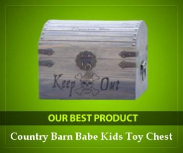 Best Treasure Chest Toy Box
