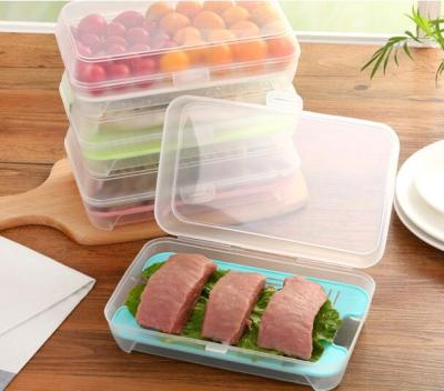 2pcs Fridge Storage Box Fish Seafood Box Fridge Organizer Food Storage Container Preservation Box Kitchen Storage Container