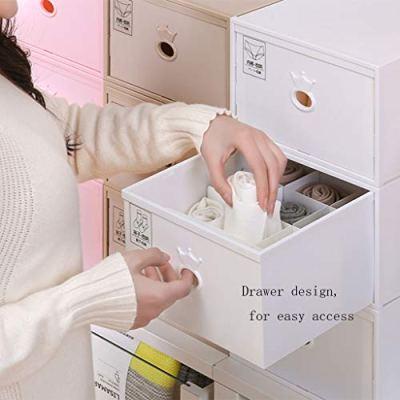MGEI Underwear Storage Box, Drawer Organizer Separate Bra