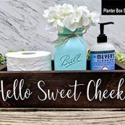 Bathroom Box Bin With Hello Sweet Cheeks. Bathroom Humor Toilet Tray