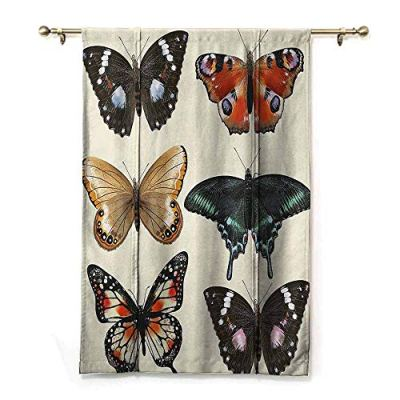 SEMZUXCVO Spa Roman Curtain Retro Colorful Different Type of Butterfly