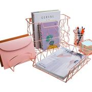 PAG Rose Gold Office Supplies 5 in 1 Desk Organizer Set, Includes Hanging Wall
