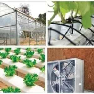 Green House Accessories