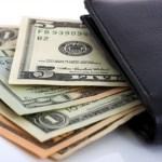 Online Store Wallet 1