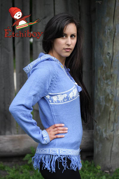 Hooded Light Blue Sweater With Bisons Chandail Bleu Pâle Avec Capuchon Avec Bisons 3