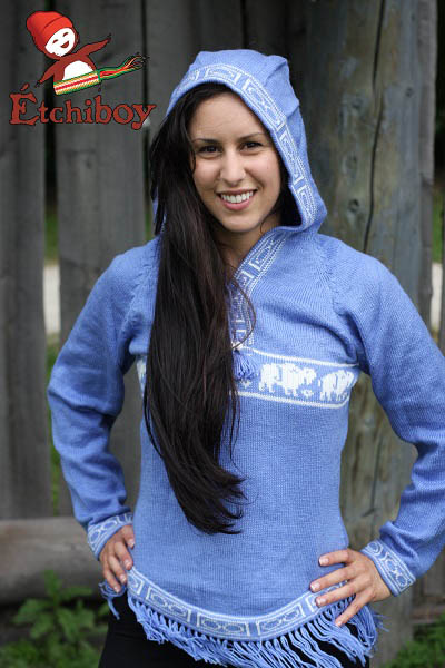Hooded Light Blue Sweater With Bisons Chandail Bleu Pâle Avec Capuchon Avec Bisons 1