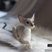 tabby_cat_bjd_3