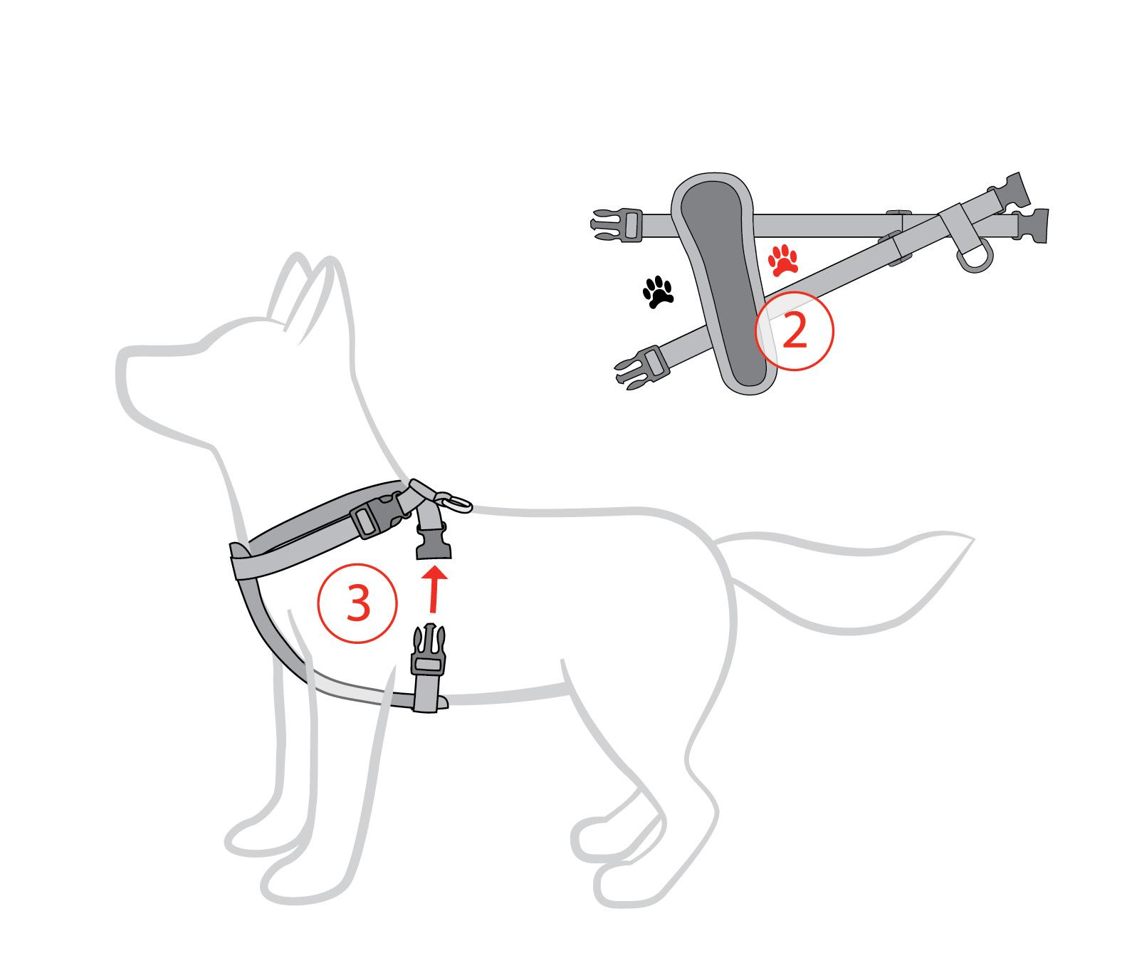 Dog Control Harness