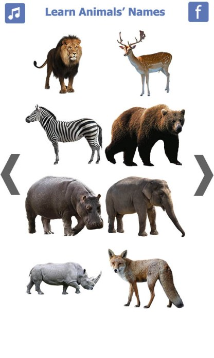 Learn Animals Name Animal Sounds Animals Pictures (2)