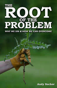 The Root of the Problem (cover)