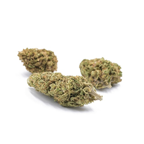 Got Hemp 2 - CBD Store - Kush CBD Flower