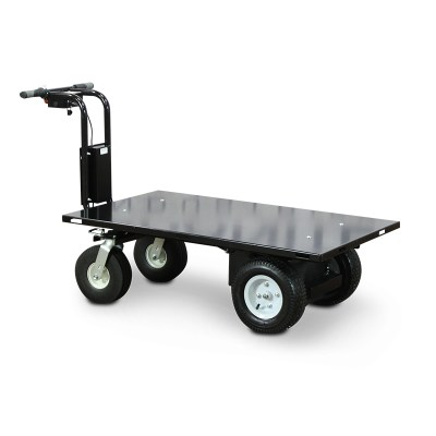 Indoor/Outdoor Electric Utility Carts